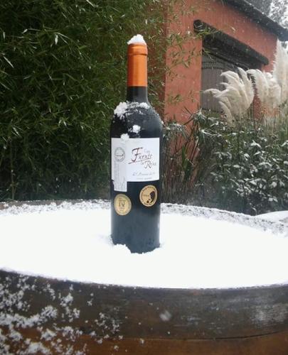 botella-nieve-405x500